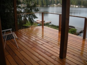 A peaceful lake view from the deck.