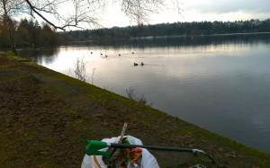 Green Lake Park-Seattle WA
