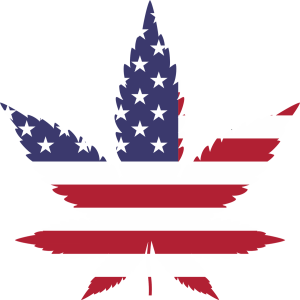US Midterms Legaization of Cannabis