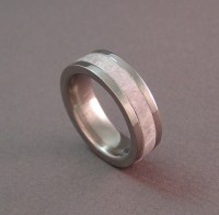 Photo of Joe's Titanium and Antler Wedding Ring